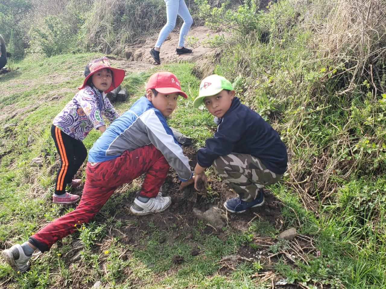 Campaña de reforestación de Toluca llega a pintar de vida a Calixtlahuaca