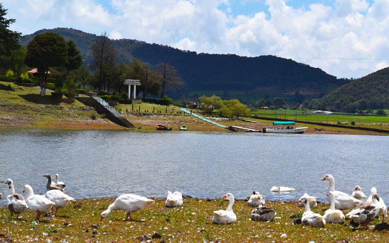 Parque Isla de las Aves en EdoMéx