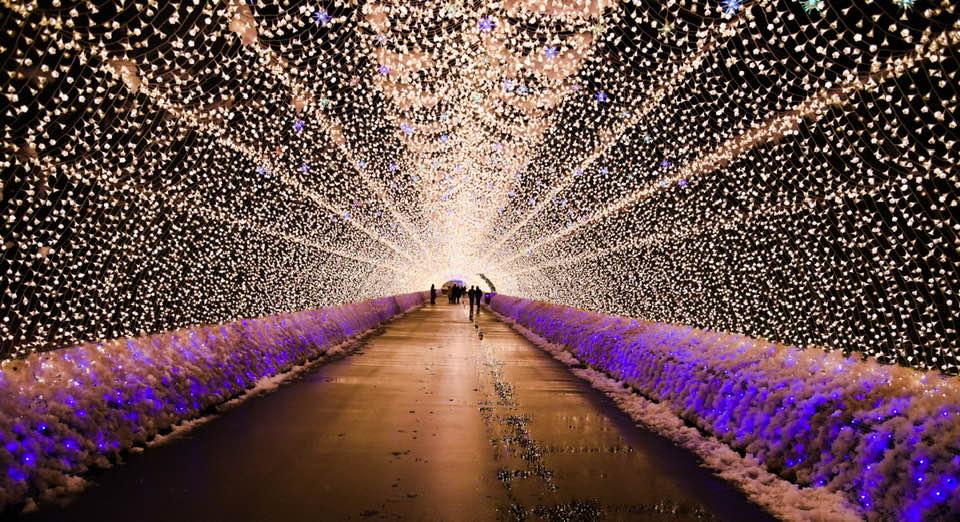 Lights of Japan Un evento unico en la CDMX
