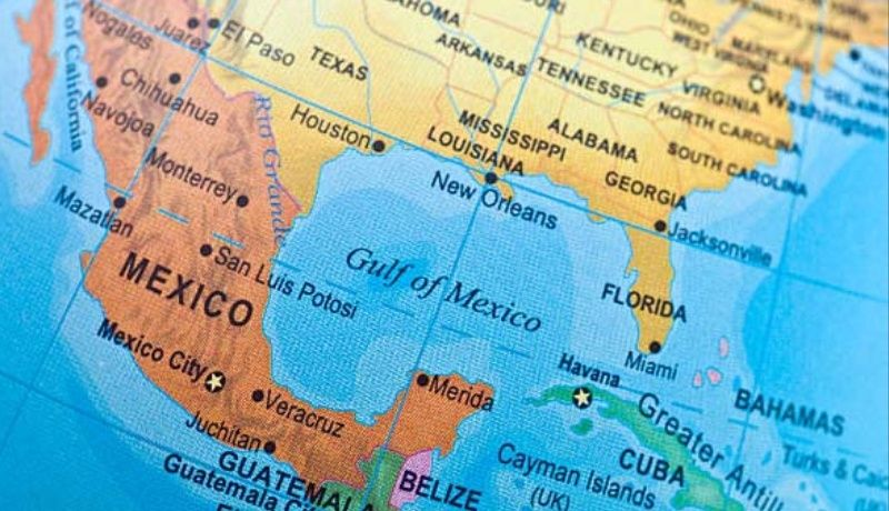 Bosque sumergido es descubierto en el Golfo de México