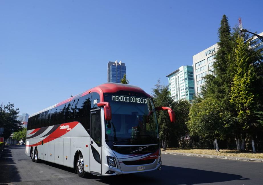 Servicios de transporte Caminante, Omnibus, Zinabus y Excelencia suspenden servicios