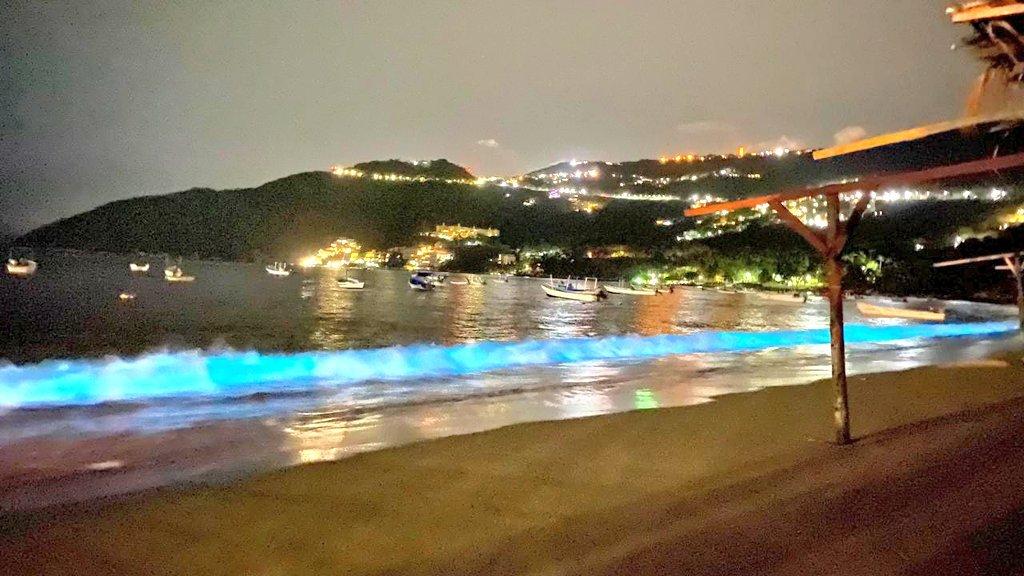 Fenómeno de bioluminiscencia en mar de Acapulco