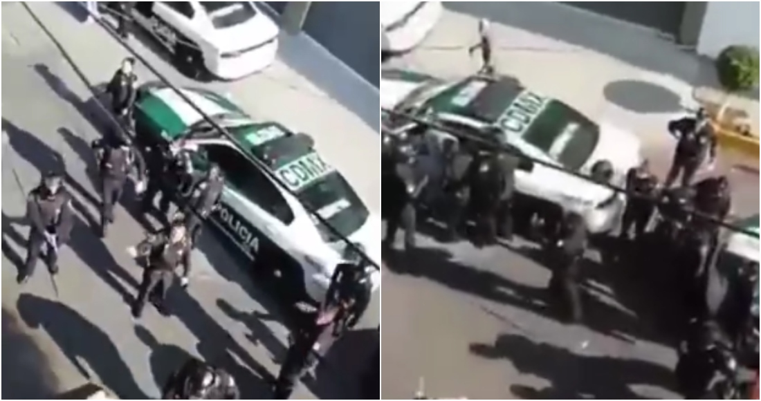 VIDEO Policías matan a pitbull en defensa