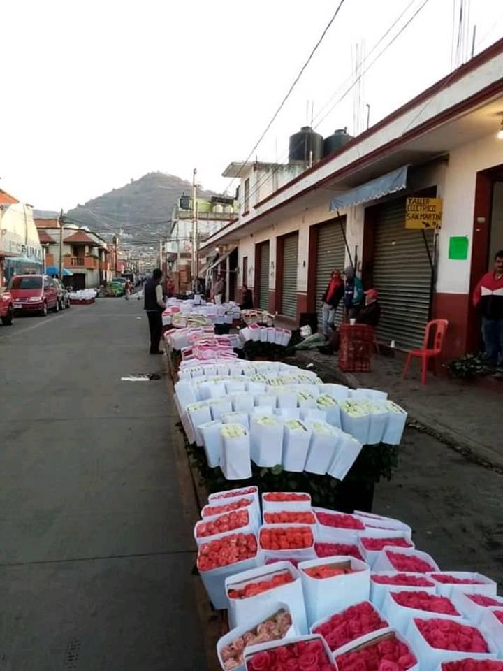 Floricultores del EdoMéx rematan o tiran su mercancía por falta de clientes por Covid-19