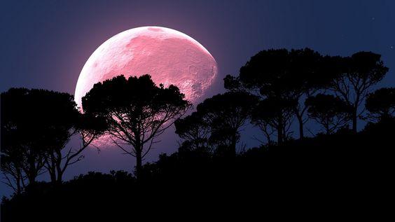 ¡Luna de fresa 2020 es hoy! Te decimos dónde podrás verla