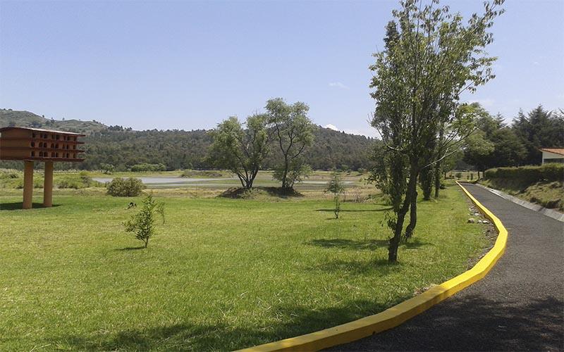 que-parques-y-zoologicos-del-edomex-abriran-este-23-de-junio4