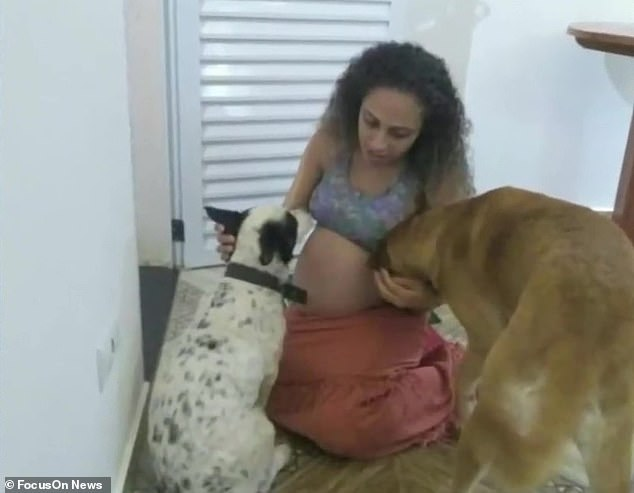 Perro celoso ataca a niñas recién nacidas