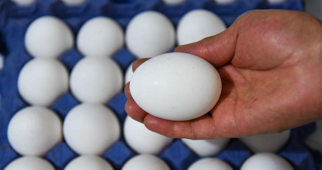 Aumenta precio de huevo, azúcar y frijol a nivel nacional en la ultima semana