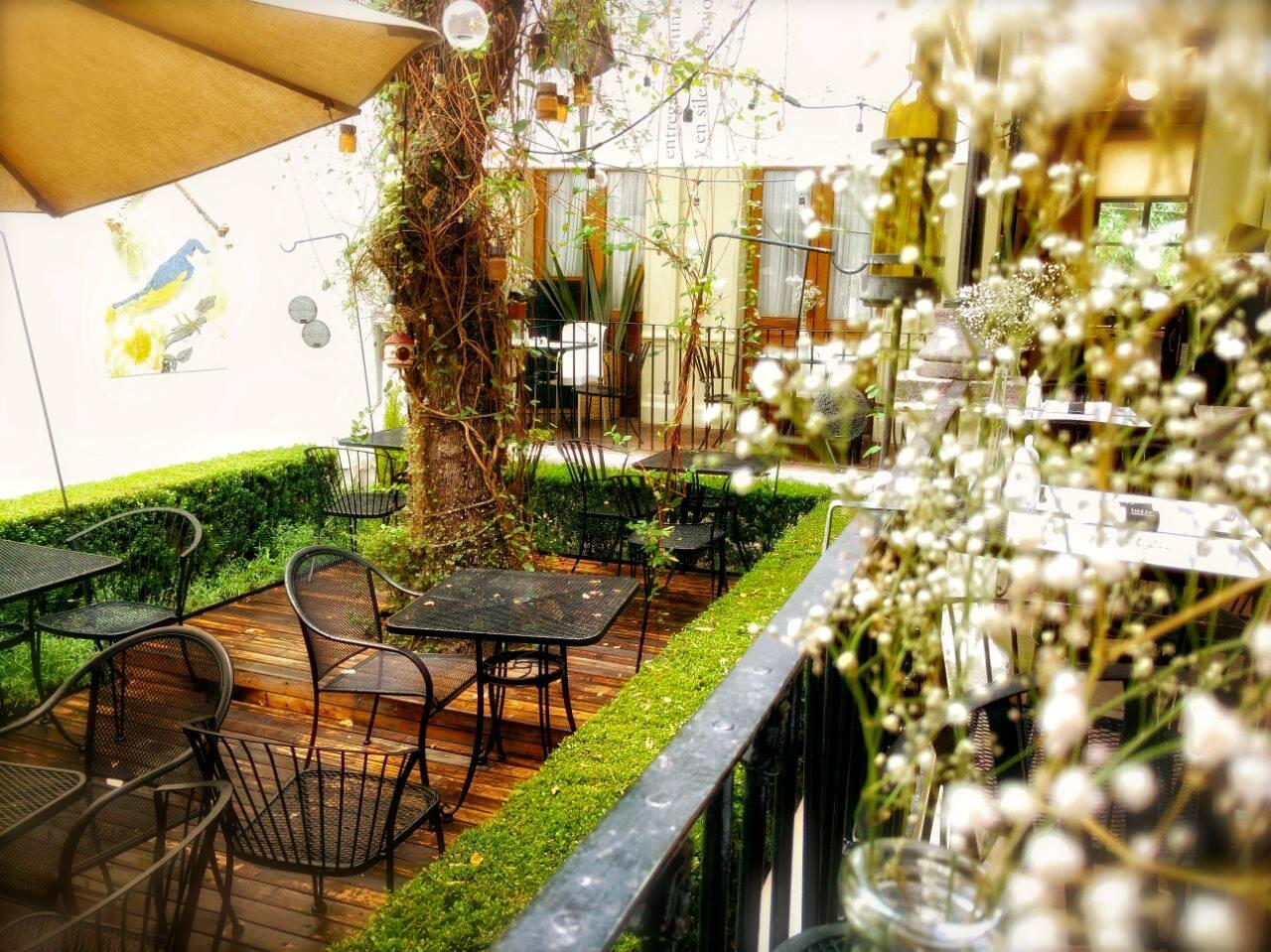 Cafeterías del centro histórico de Toluca