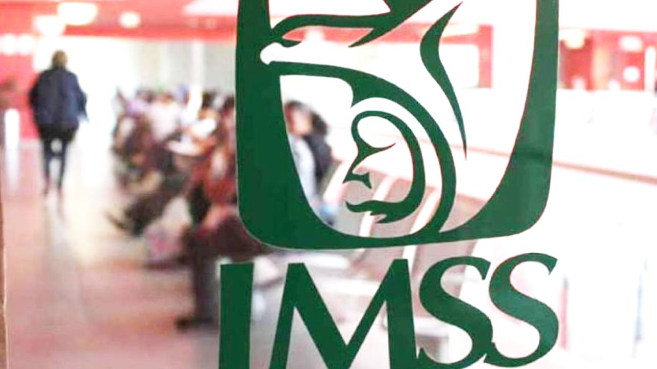 Si eres trabajador no asalariado, así puedes afiliarte a los servicios del IMSS