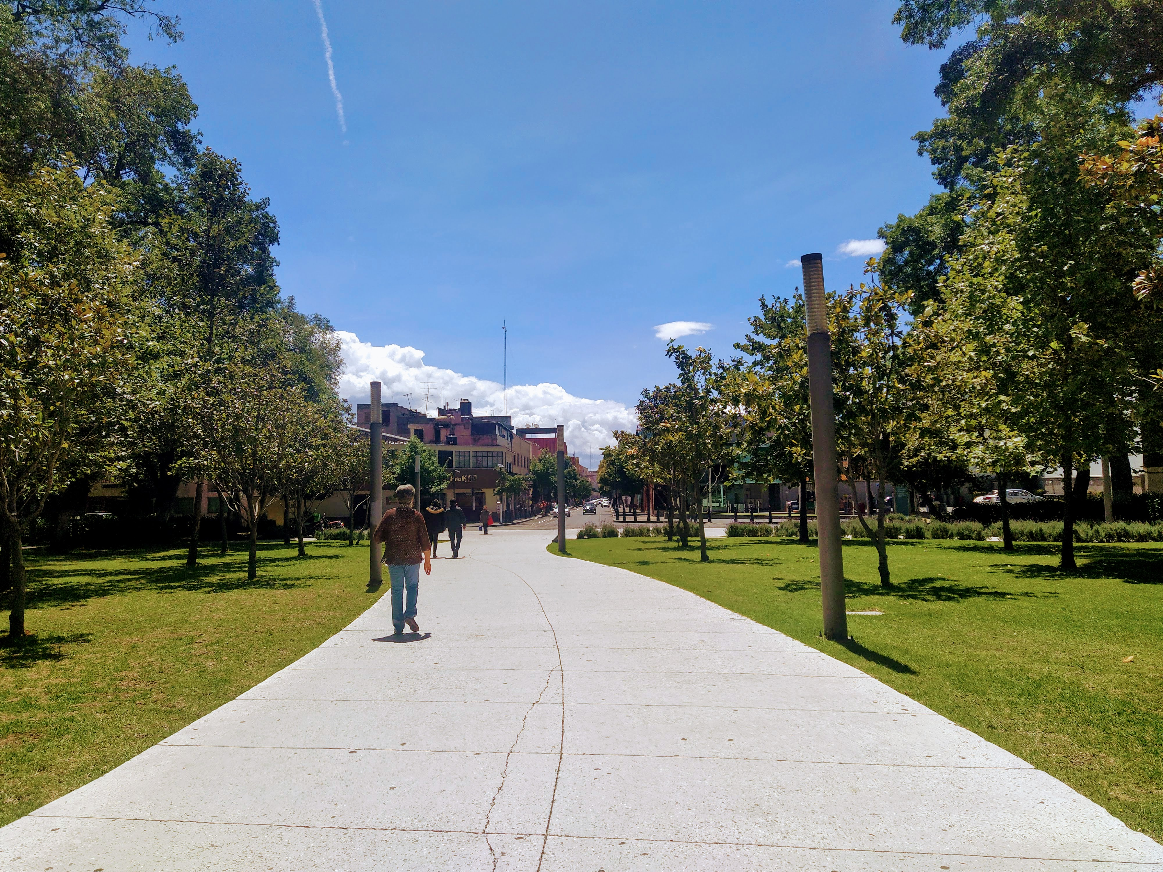 toluquenos-siguen-yendo-a-parques-y-plazas-publicas-pese-a-estar-cerrados5