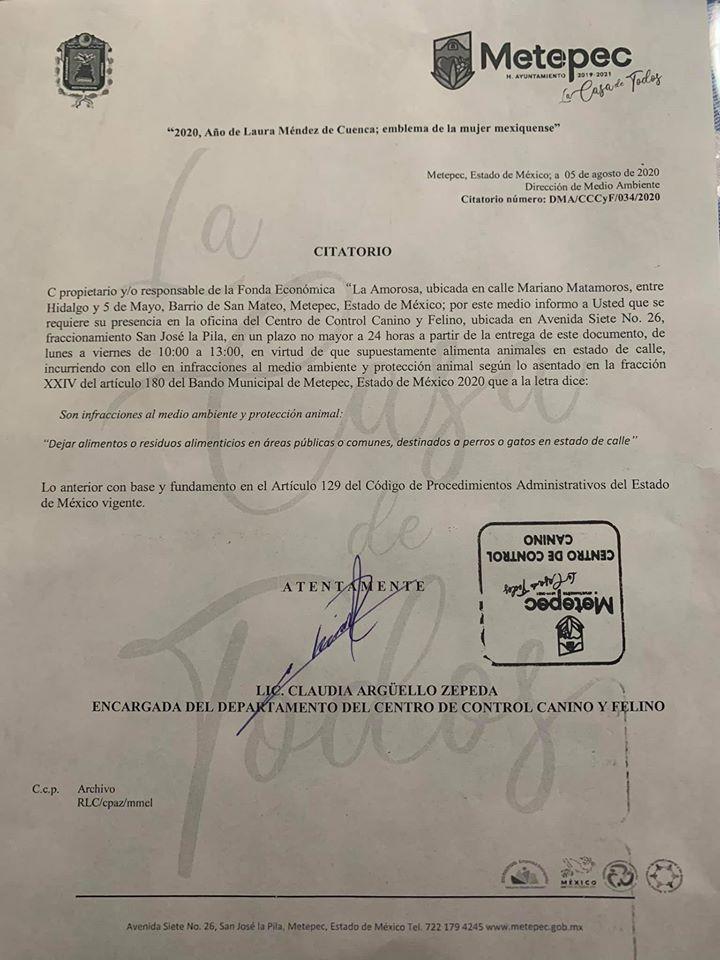 En Metepec multan por dar de comer a perritos callejeros