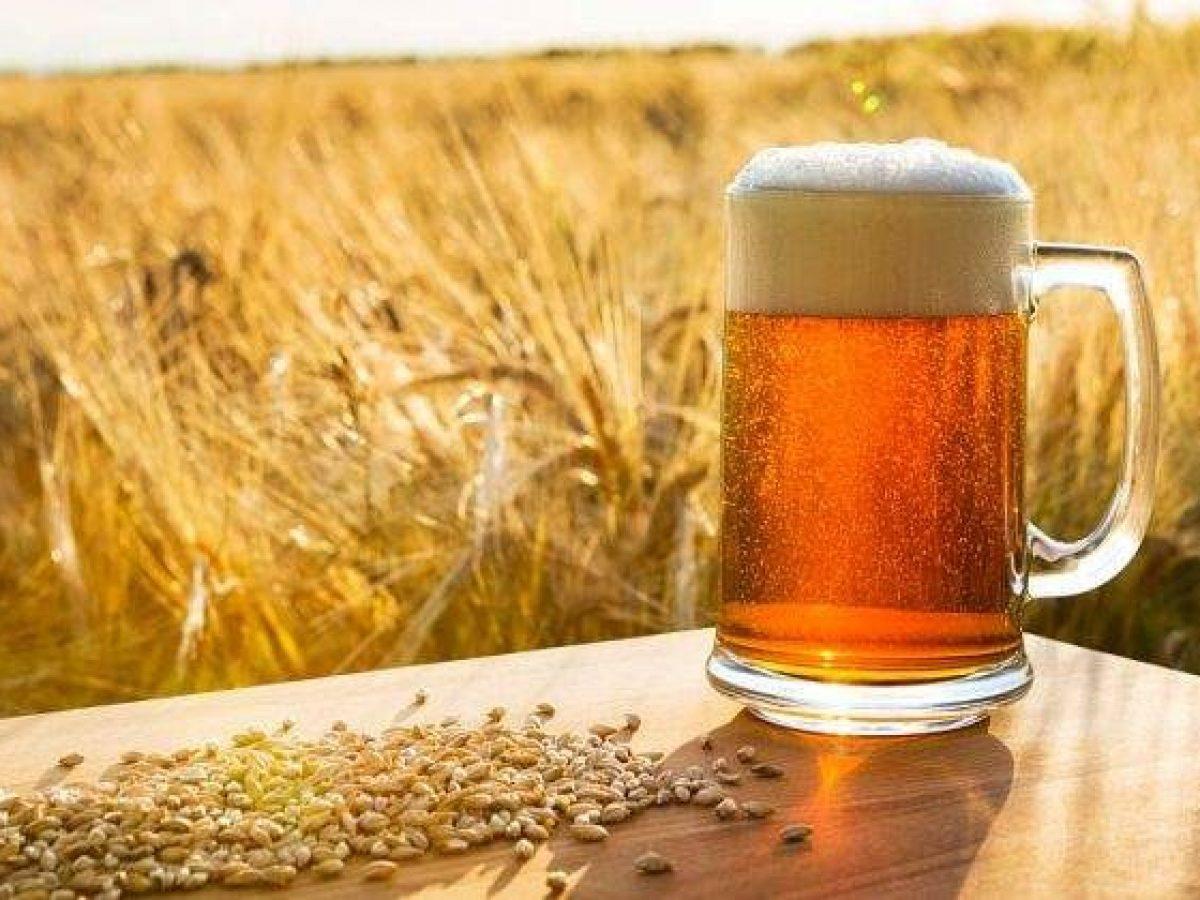 la cerveza, beneficios
