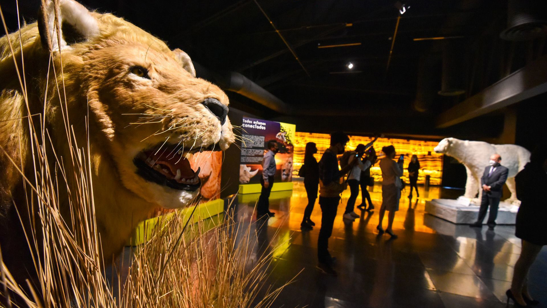 Centro-Cultural-Toluca-abre-sus-puertas-al-publico