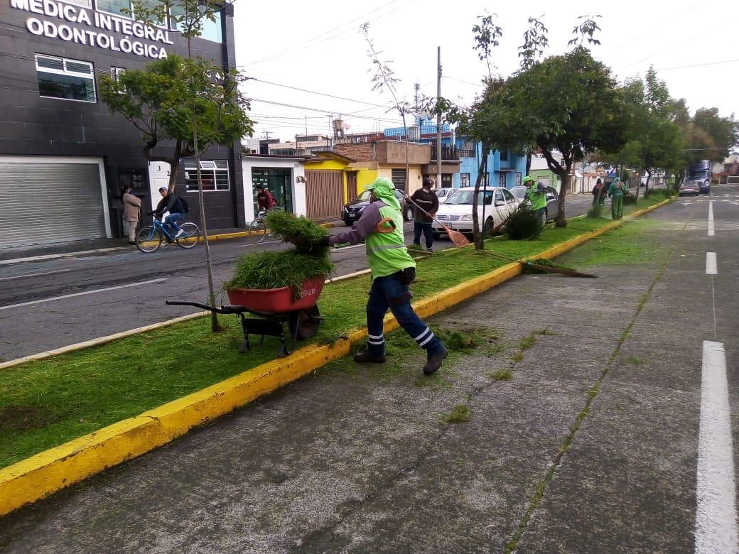 dan-mantenimiento-a-las-areas-verdes-y-parques-en-toluca