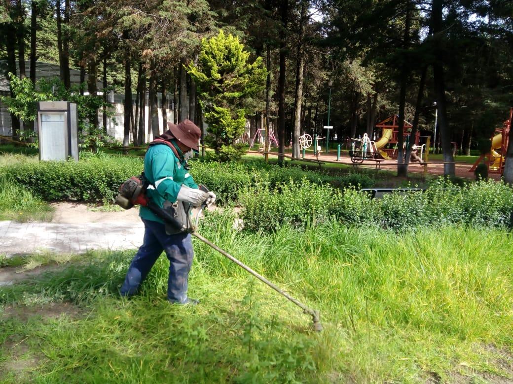 dan-mantenimiento-a-las-areas-verdes-y-parques-en-toluca2