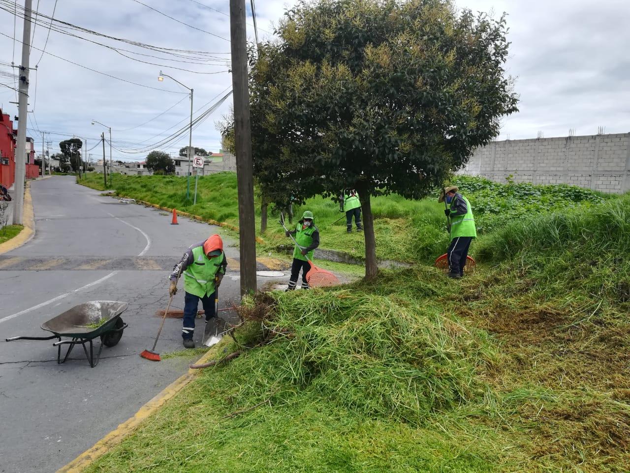 dan-mantenimiento-a-las-areas-verdes-y-parques-en-toluca4