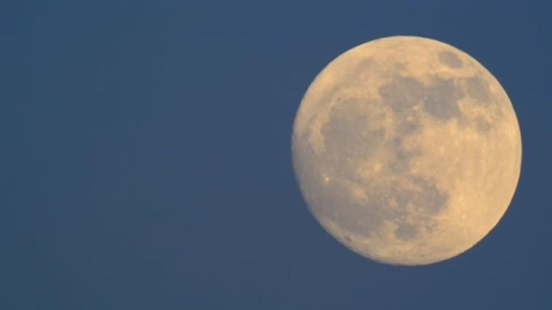 Luna de Gusanos