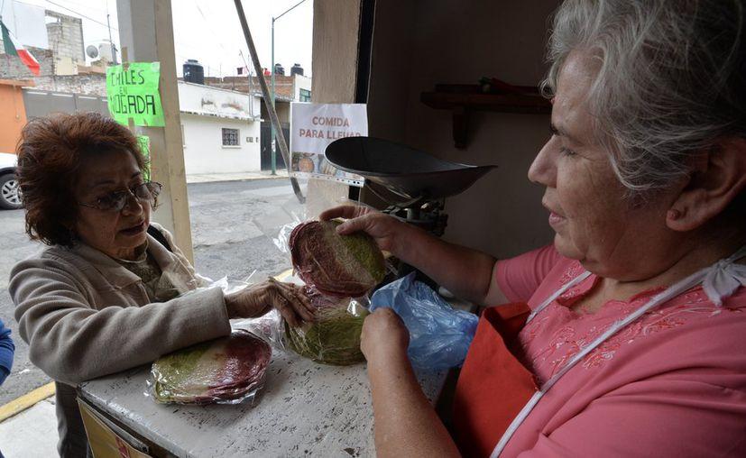 tortillas-tricolor-en-toluca-una-tradicion-que-empezo-hace-19-anos2