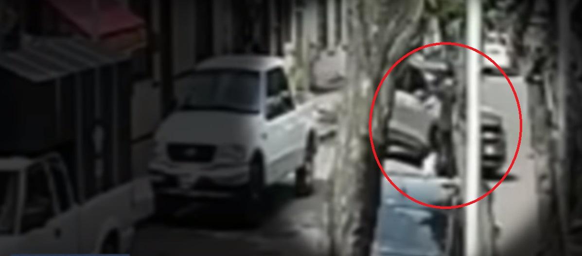(Video) Joven y su perro fueron atropellados mientras paseaban en la CDMX