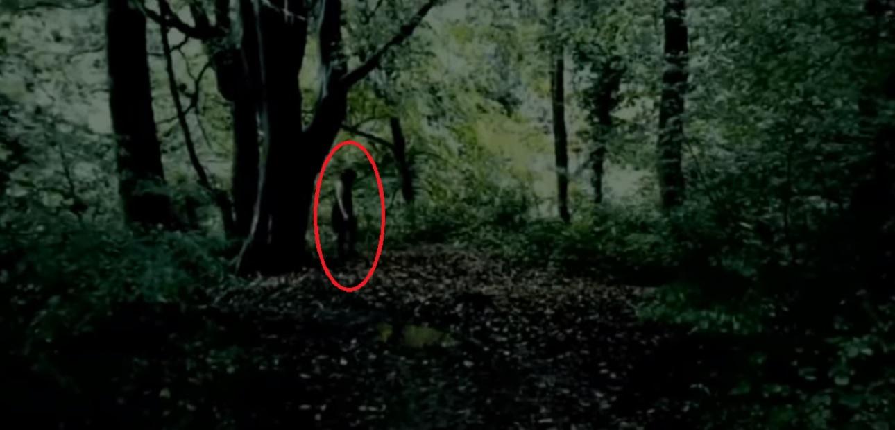 """(Video) Captan a supuesta """"niña fantasma de ojos negros"""" en bosque de Inglaterra"""