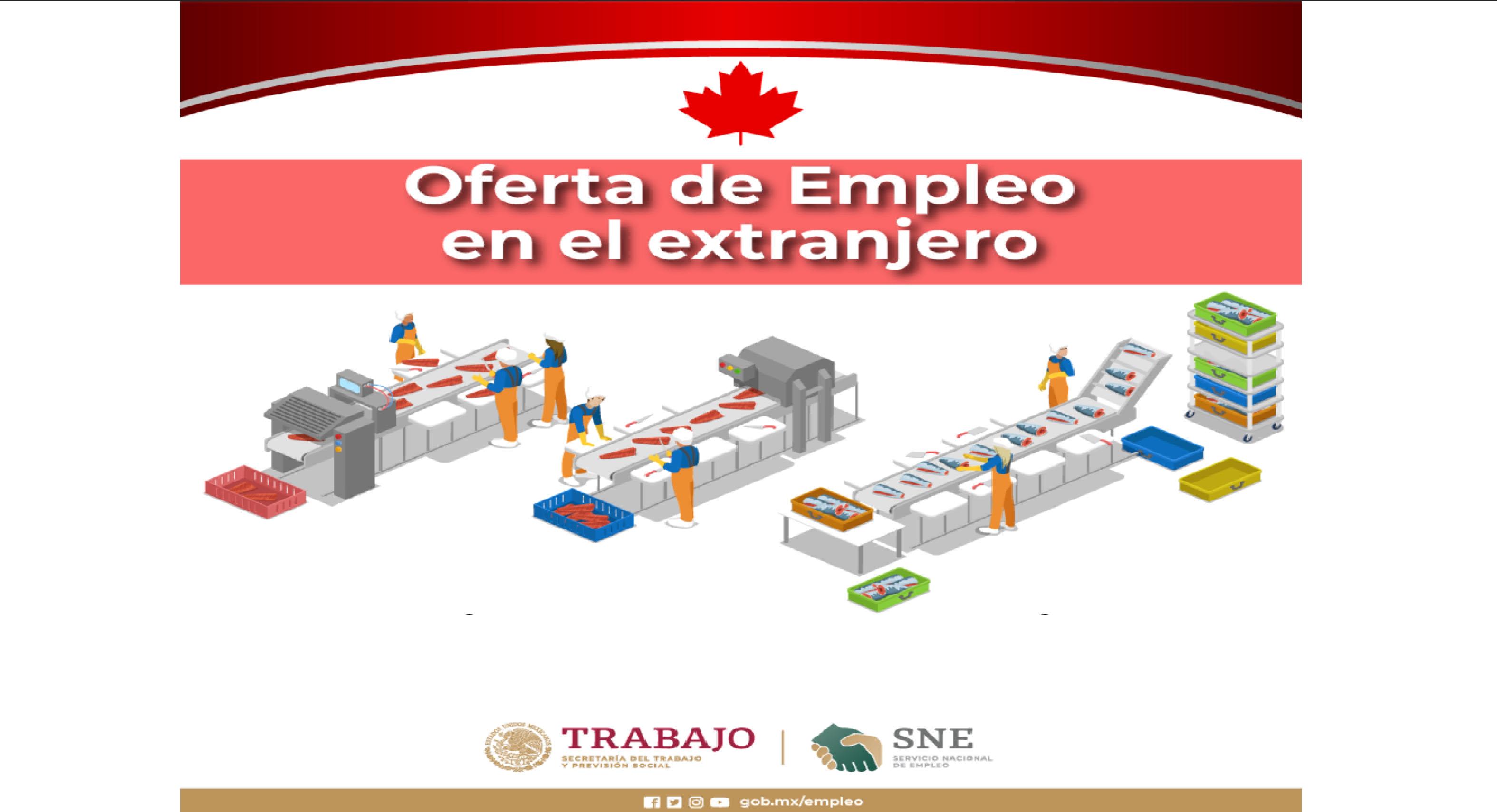Canadá ofrece empleo a mexicanos para ganar $33,600.00 pesos mensuales