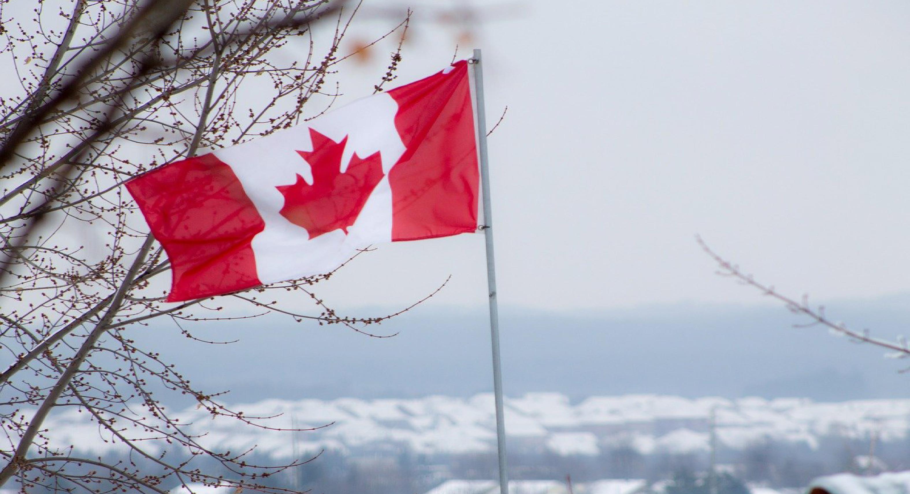 Gana 28 mil 800 pesos al mes, Canadá busca mexicanos para brindar trabajos