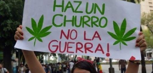 ¿Cuántos gramos de marihuana puedes traer contigo, de acuerdo con la nueva despenalización en México? Aquí te dejamos la información