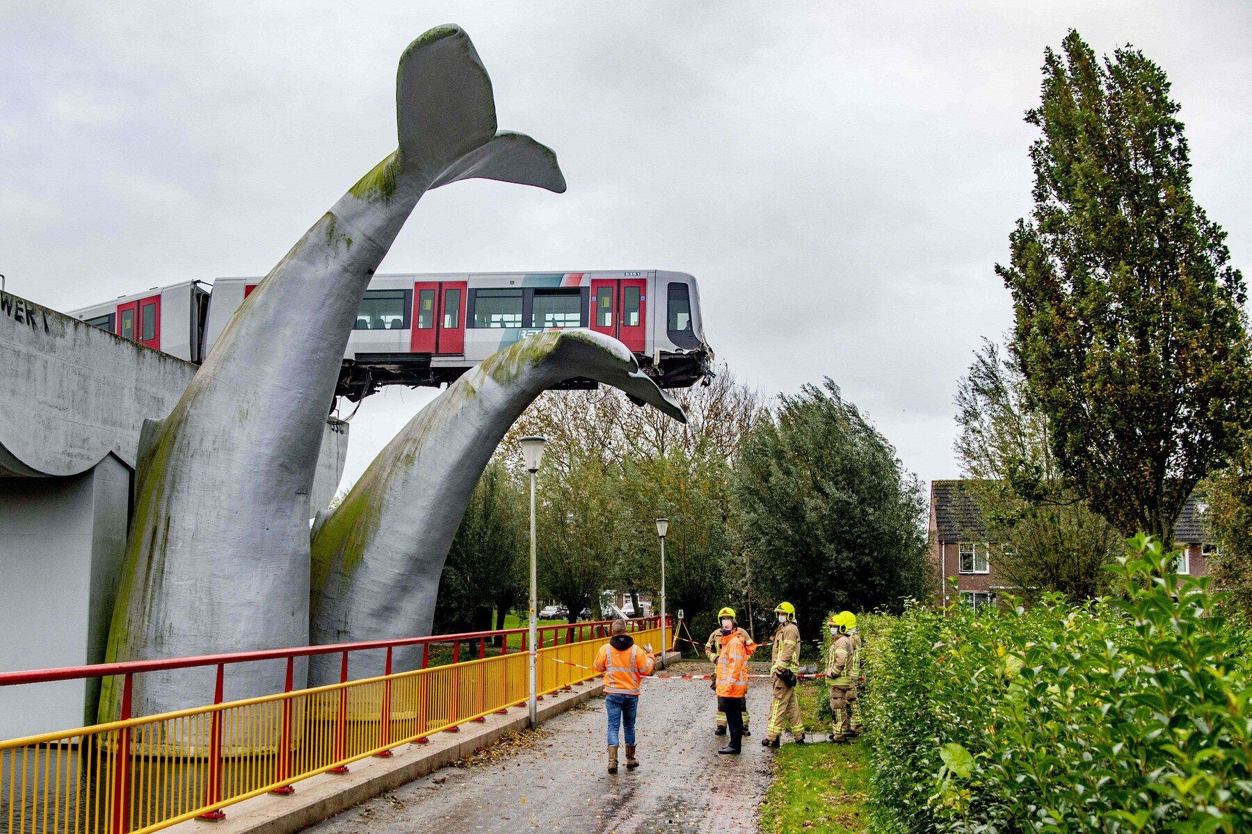Tren salvado por escultura de cola de ballena en Europa