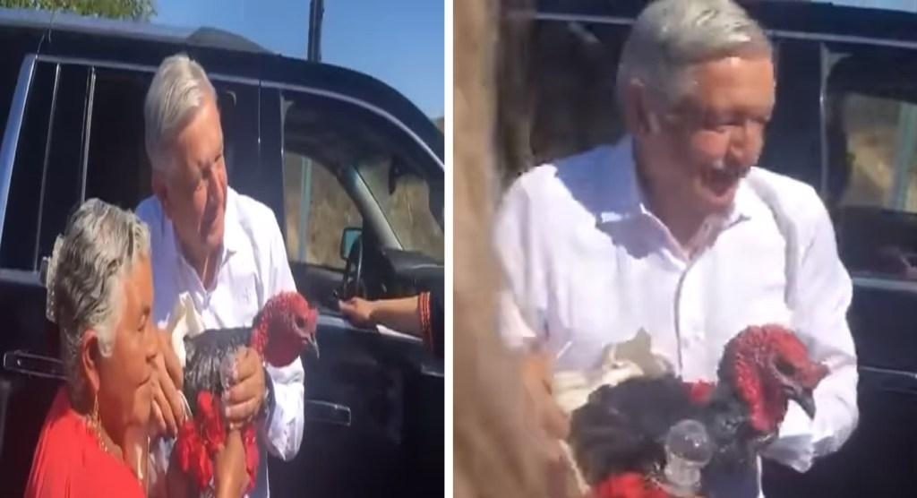 AMLO recibe guajolote y mezcal de regalo, ave es liberada