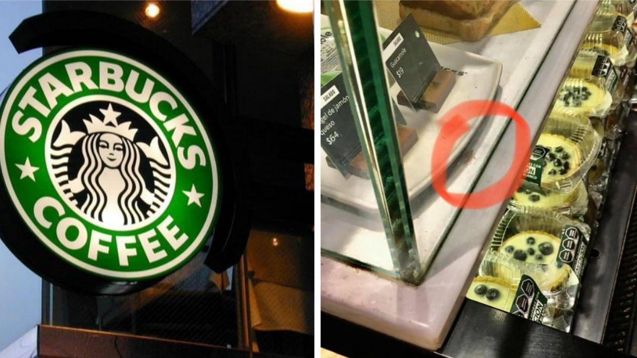 Captan cucaracha en una tienda de Starbucks México