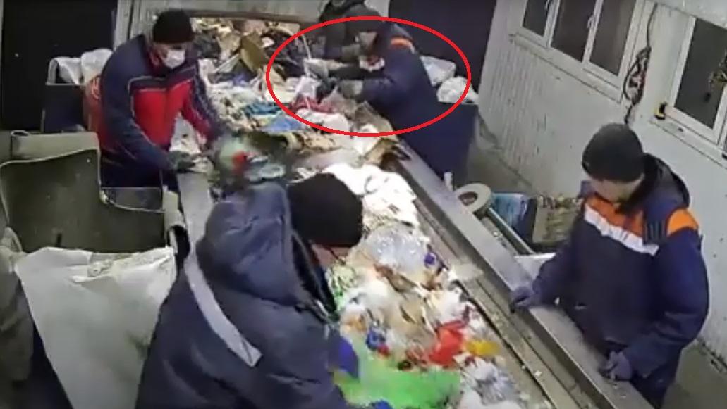 Video II Gatito es salvado de ser triturado en una máquina de desechos