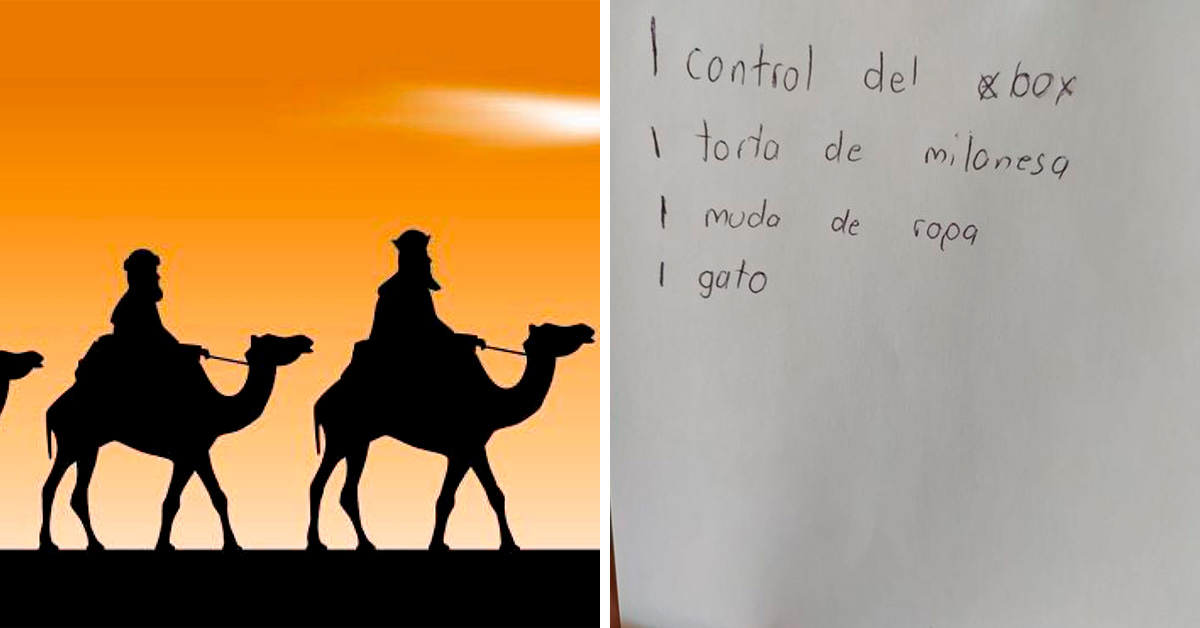 viral-nino-pide-una-torta-de-milanesa-a-los-reyes-2-160494