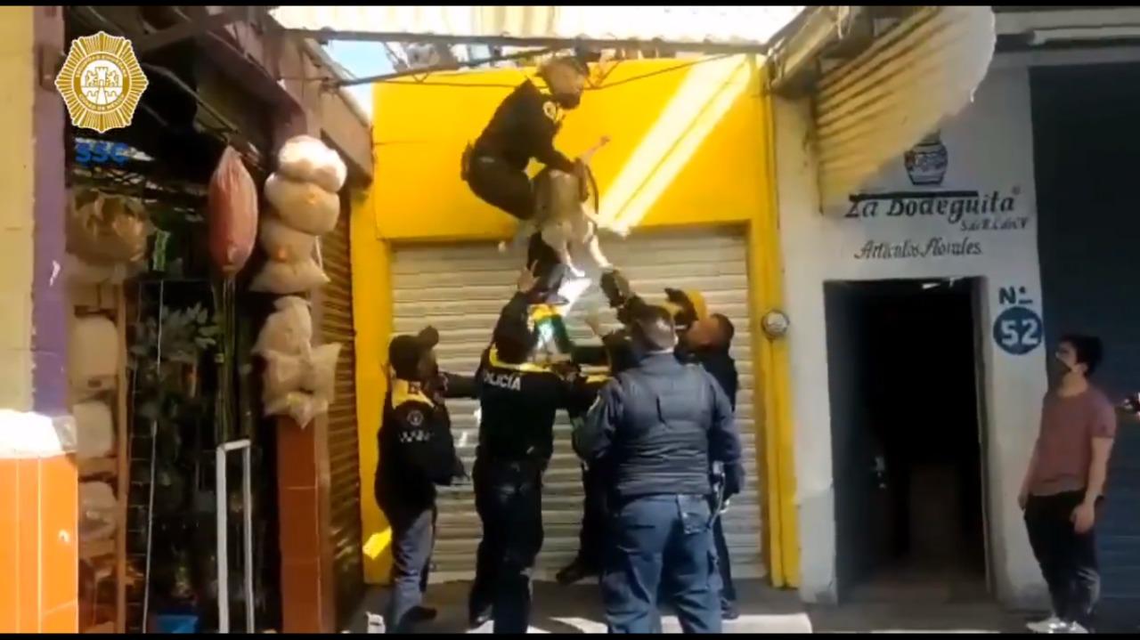 Perrito es rescatado por policías durante incendio en Mercado de Jamaica || VIDEO
