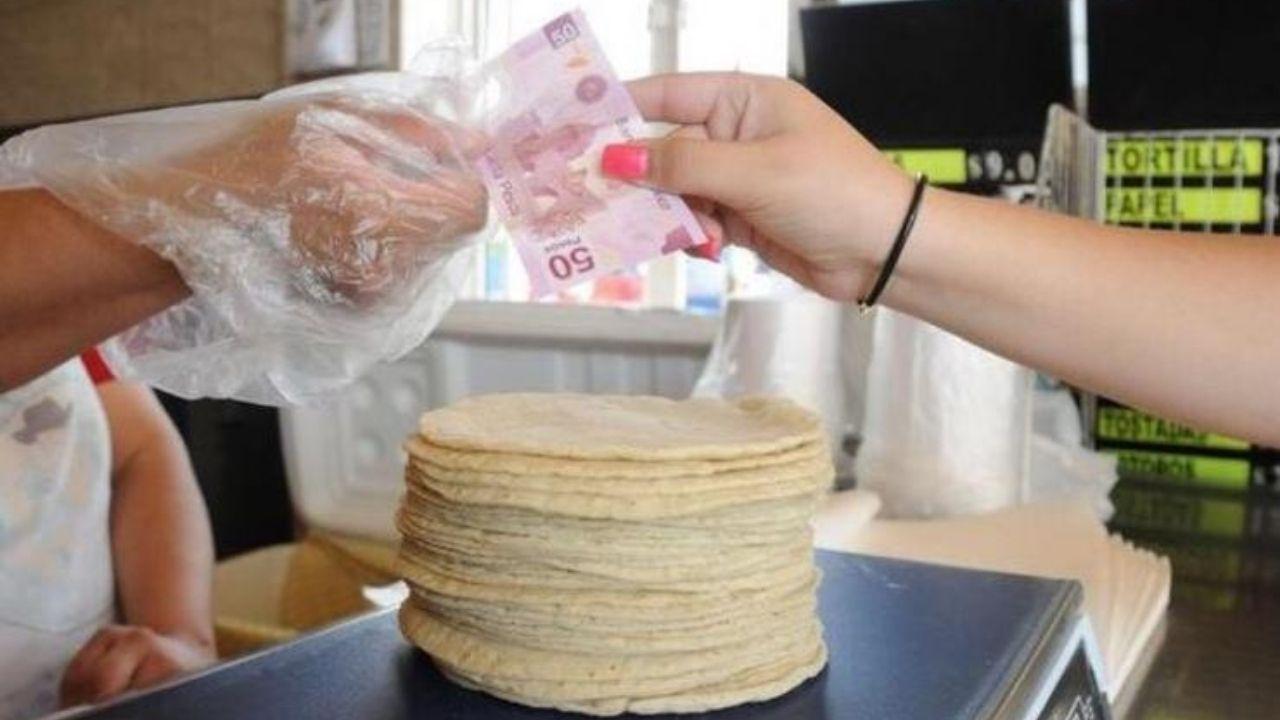 """A través de """"Quién es Quien en los Precios"""" se filtraron los precios de la tortilla en algunos estados de México."""
