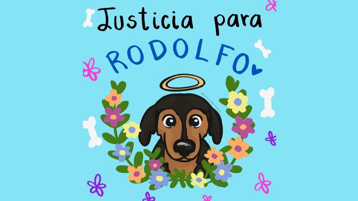 Justicia_para_Rodolfo_perrito.original