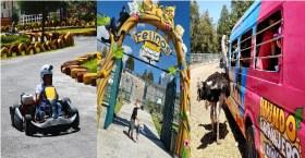 Mundo Granjero y zoológico ofrece diferentes actividades al aire libre