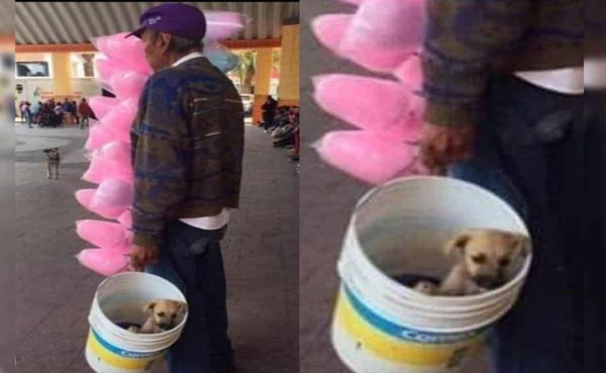 Abuelito sale a vender algodones de azúcar con su perrito en una cubeta
