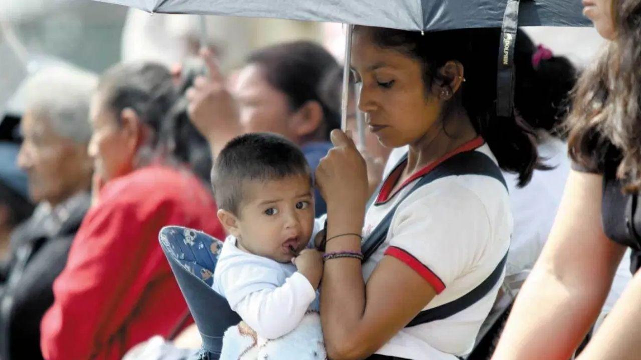 madres y padres solteros pueden solicitar apoyo bienestar de 1600 pesos bimestrales