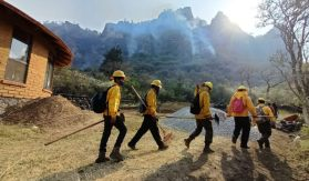 Brigasdistas arriesgan su vida por sofocar el incendio en Morelos