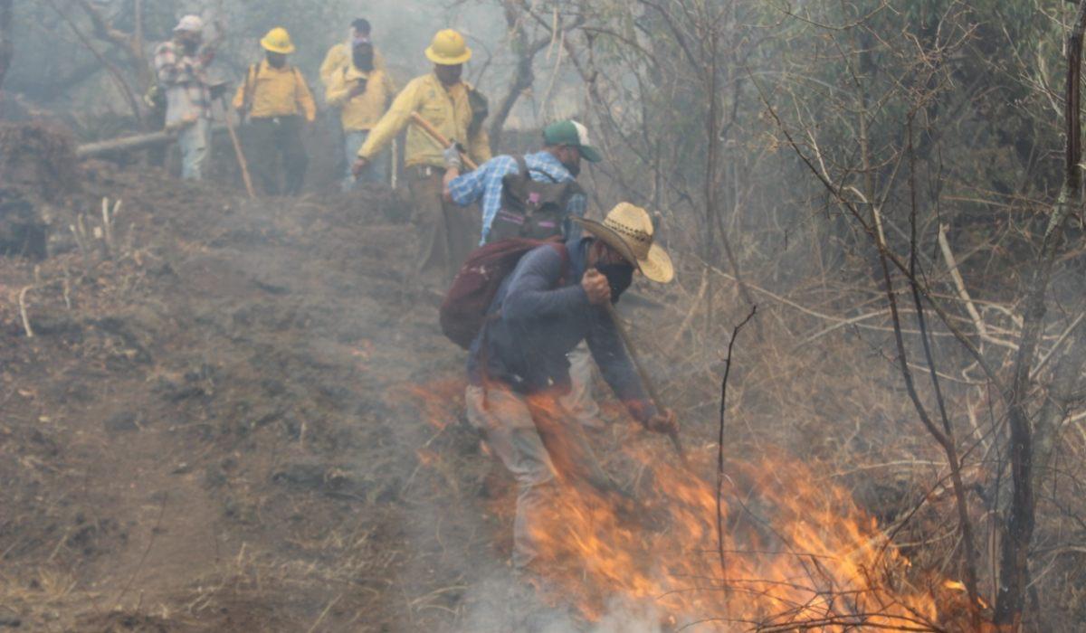 Varias brigadas trabajan para sofocar el fuego