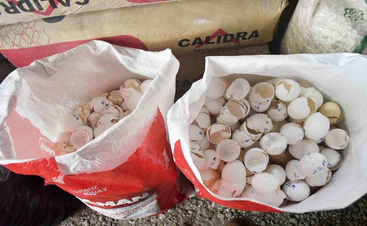 Edomex cascarones de huevo para limpiar el rio lerma