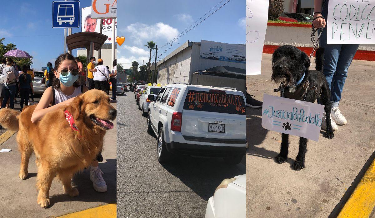 Población realizo una marcha para exigir justicia por la muerte del perro