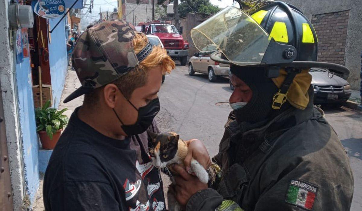 Los bomberos también se dedican al rescate de animales como gatos y perros