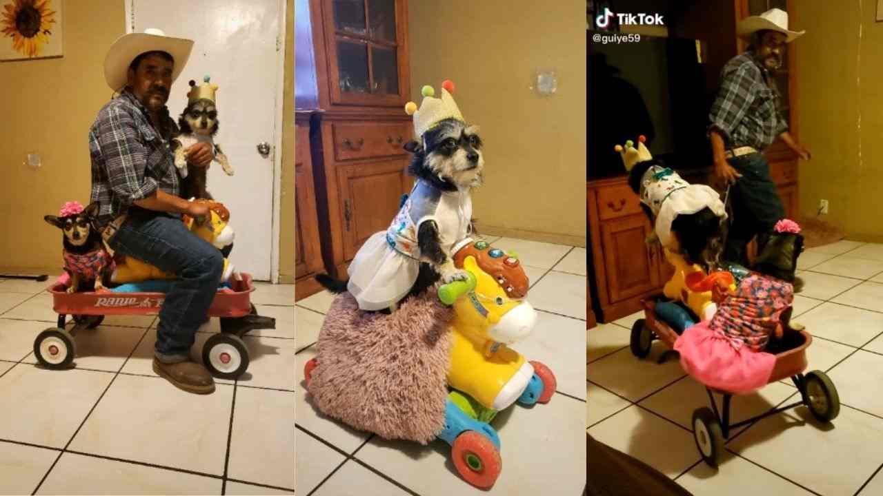 señor se vuelve viral por hacerle fiesta de cumpleaños a su perrita, es el mismo que subió a un caballo mecánico a su mascota