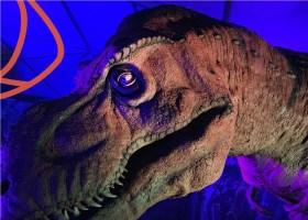 lugares en toluca para visitar, tierra de dinosaurios 2021