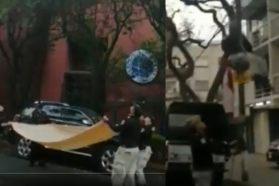Captura de pantalla del video donde fue recatado un gato