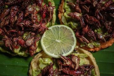 comida en Teotihuacán