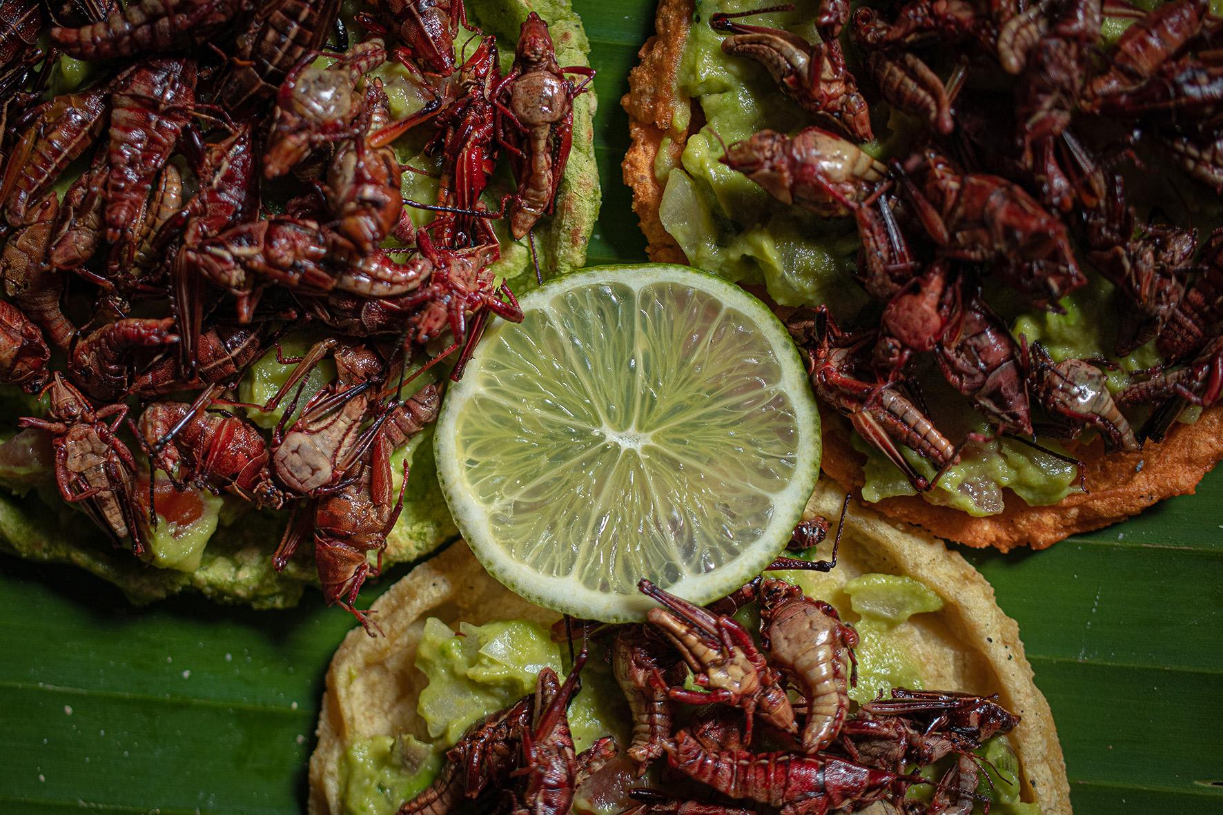 Vive, disfruta y prueba la gastronomía prehispánica de Teotihuacán