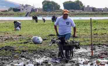 Ciudadanos limpian Laguna de Pamillas en Toluca, sacan botellas, llantas y toneladas de deshechos